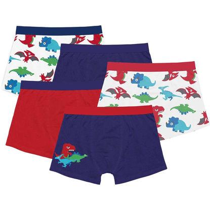 Picture of Underwear Childrens 5-Pack